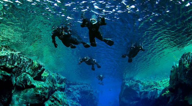 Group of Snorkelers in Iceland Waters